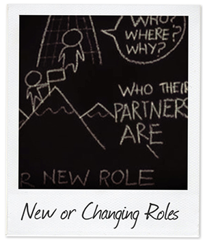 New and changing roles polaroid